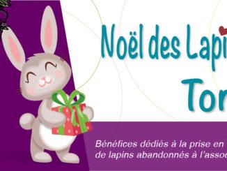 Affiche Tombola Noël des lapins